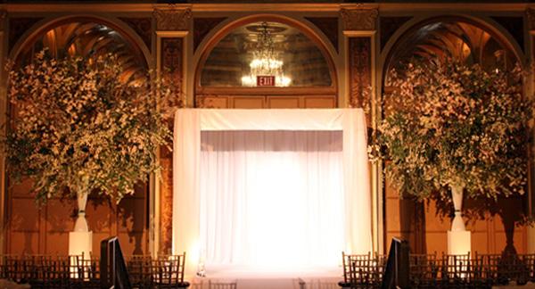 Tantawan Bloom Design
